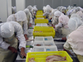 Frozen Fish Fillet Production Process