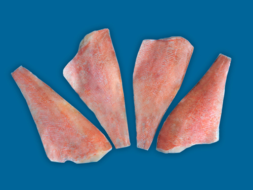 Redfish fillets with skin frozen skin on redfish fillet for Red fish fillet